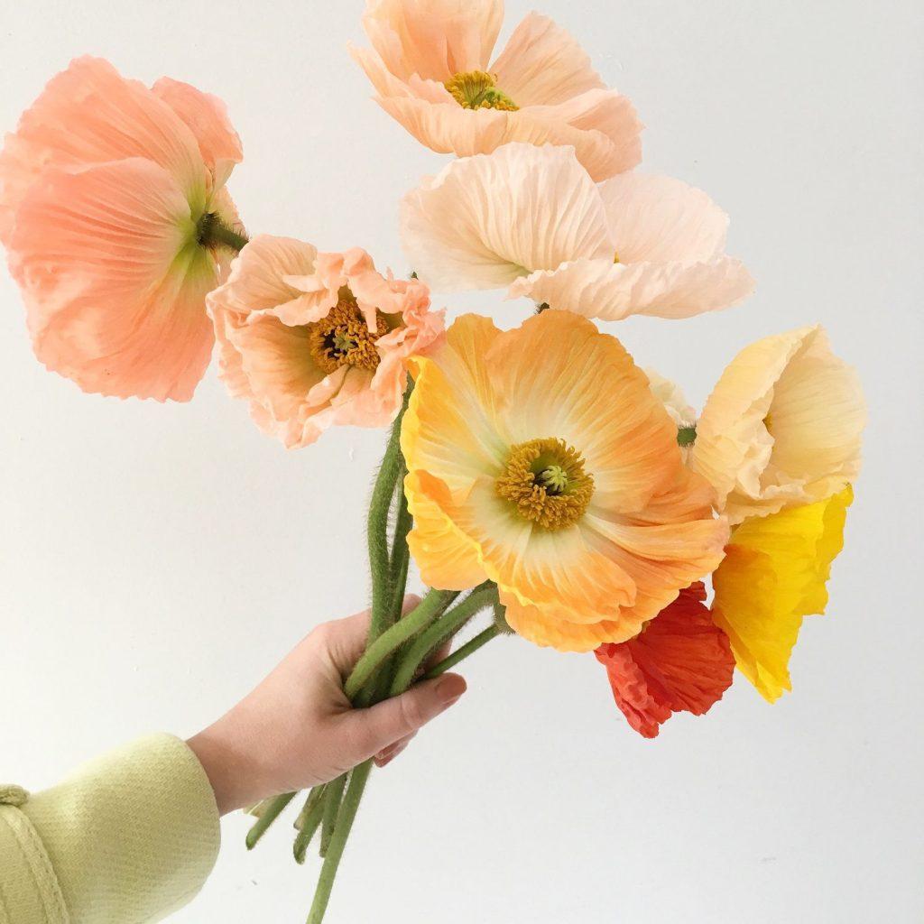 Team Flower